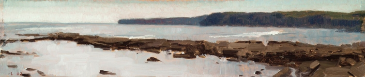 "<h5>Hags Head High Tide</h5><p>Oil  |  5"" x 12""</p>"